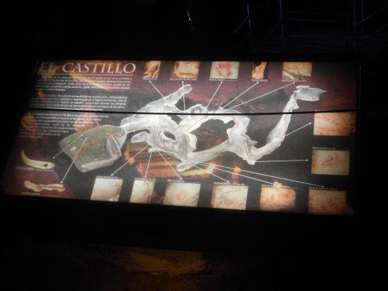 Cave of El Castillo : Cueva de El Castillo