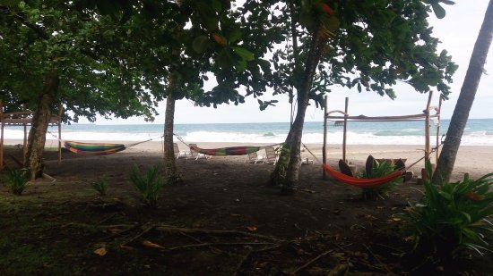 Hotel Perla Negra: Hamacas en la playa / Hammocks on the beach