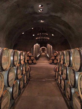Oakville, CA: Wine cellar.
