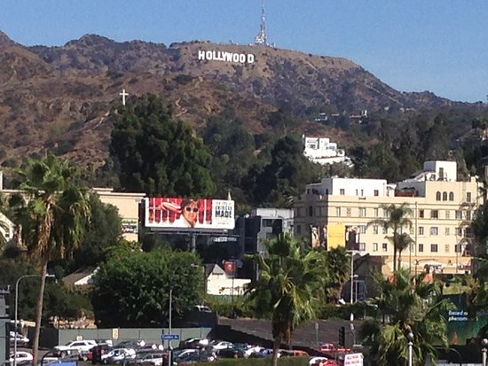 Hollywood Hills: Pic 1
