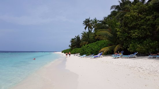 Fihalhohi Island Resort : Это сторона, домашнего рифа