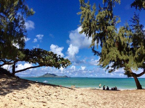 Kailua Beach Park: カイルアビーチパーク