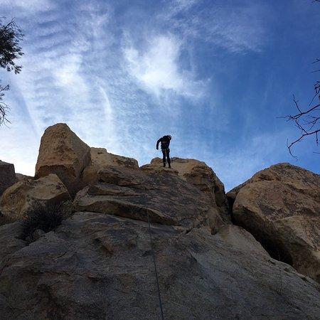 Joshua Tree, CA: photo1.jpg
