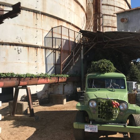Waco, TX: Day spent at Magnolia Market fabulous!  Family friendly with play area full of games and relaxin