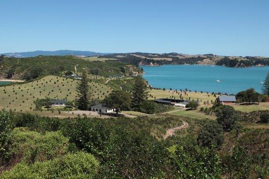 Auckland, New Zealand: Rotoroa Island: Predator Free Island Sanctuary, Hauraki Gulf
