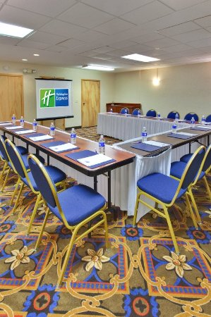 Holiday Inn Express Flint: Meeting room