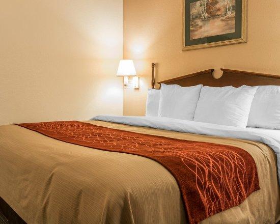 Belleville, Μίσιγκαν: Guest room