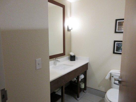 Piedmont, Carolina del Sur: Guest room amenity