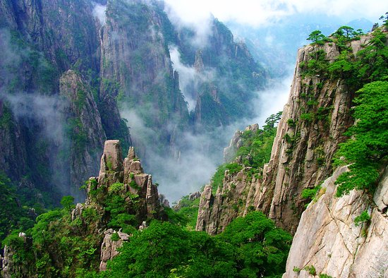Huangshan Private Tour