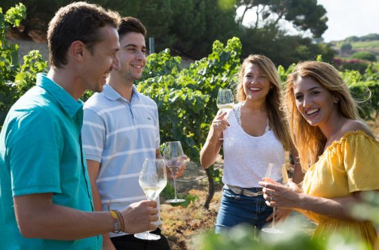 Boutique Wineries Vin et tapas en...