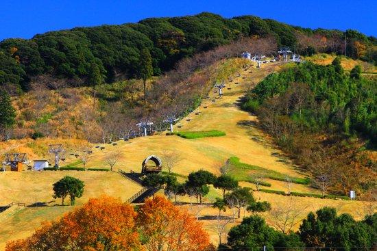 Miyakonojo, Japan: 施設全景