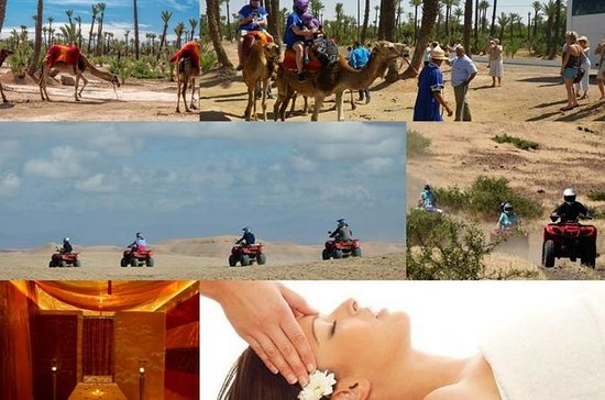 Camel Ride, Quad Bike Adventure y...