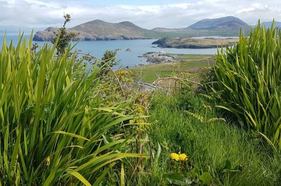 4-Day Kingdom of Kerry Tour from...