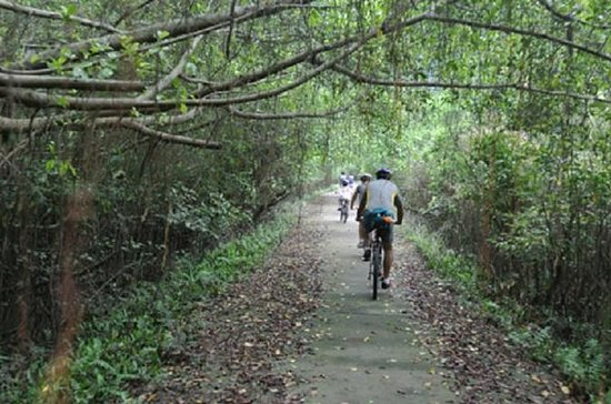 Cat Ba Biking Tours Half Day depart from Cat Ba Town
