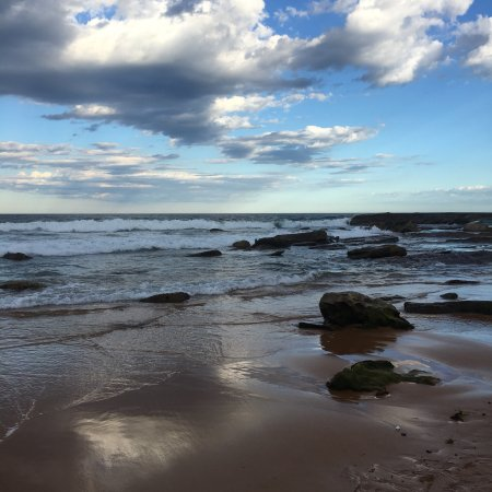 Whale Beach, Australia: photo3.jpg