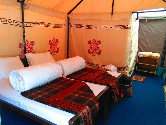 Jispa, India: Room