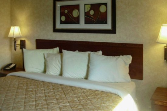 Shelbyville, KY: Guest room