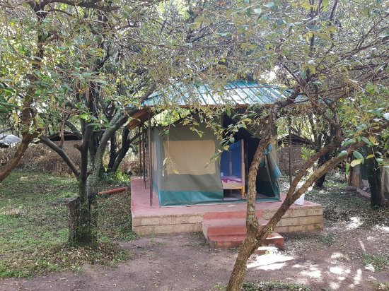 The out view of Miti Mingi Eco Camp