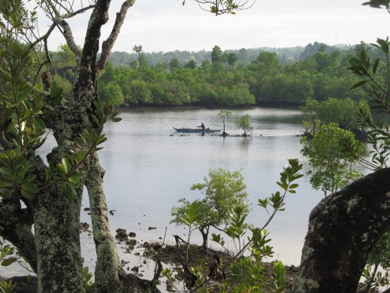 Badian, الفلبين: The perfect place to explore by kayaks or paddle board