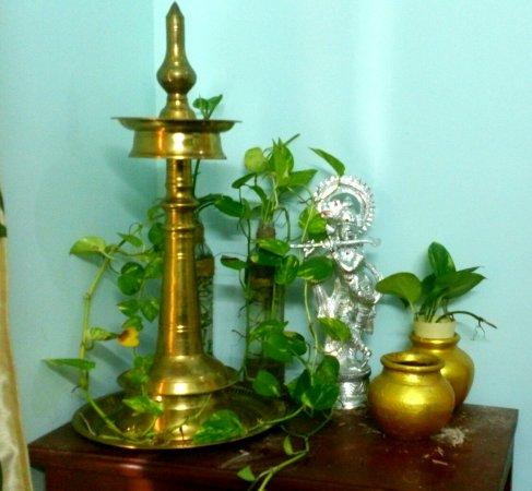 Ayurveda Sanctum