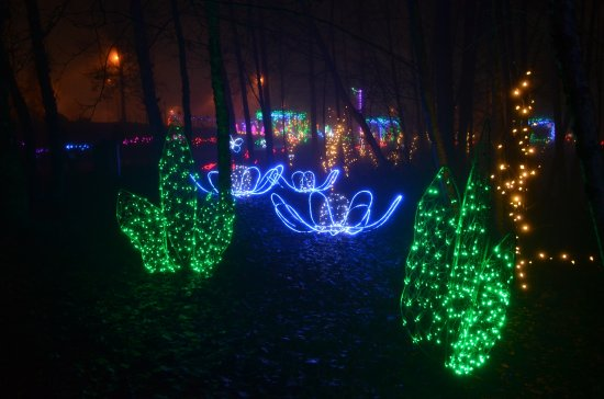 Coquitlam, Kanada: Lights at Lafarge