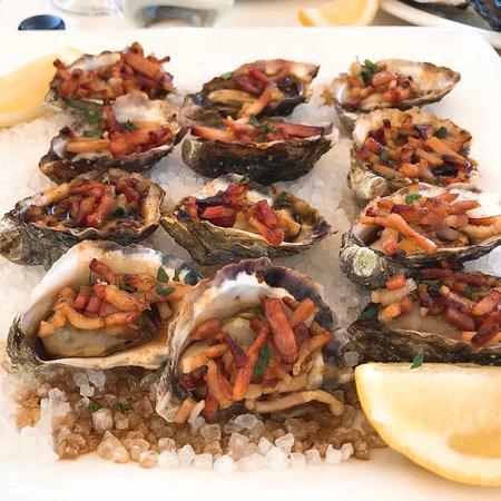 Sydney Cove Oyster Bar: photo0.jpg