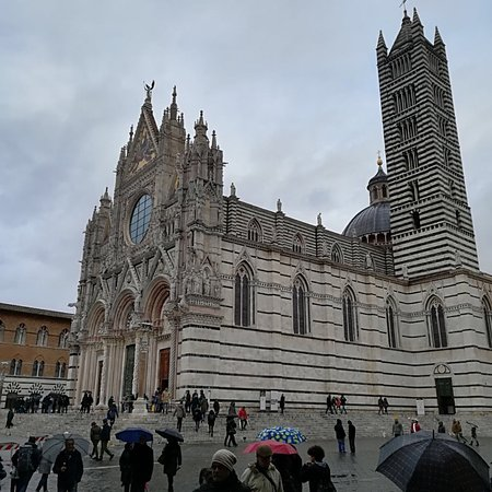Siena, Włochy: photo5.jpg