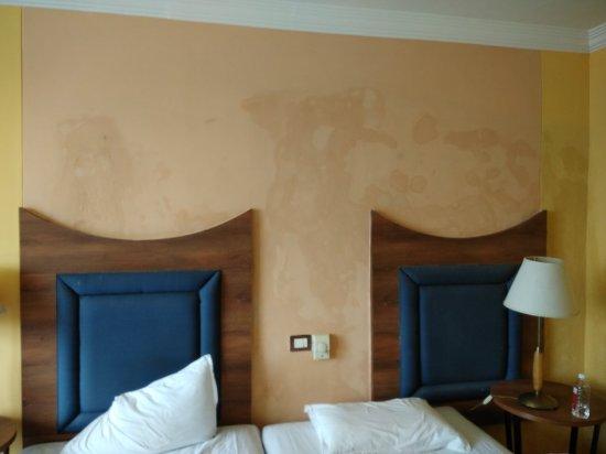Cama Hotel: IMG_20171209_120526_large.jpg