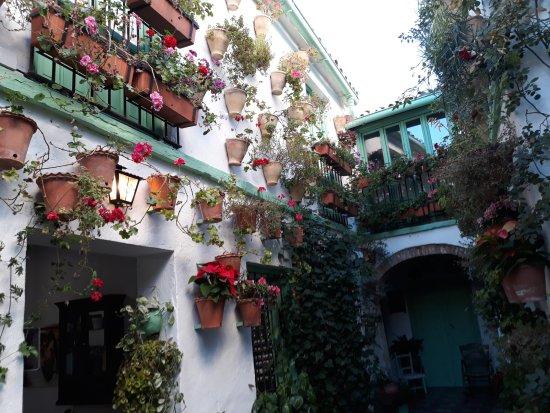 Los Patios De San Basilio: Patio y habitaciones turisticas