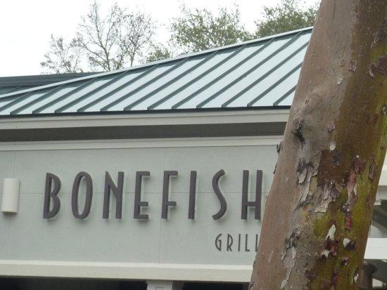 Bonefish grill bonefish grill hilton head island for Bone fish grill locations