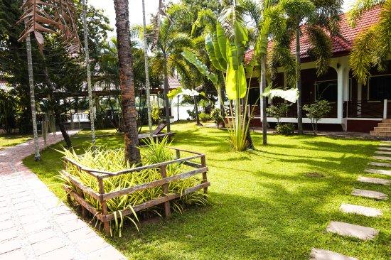 Don Det, Laos: Garden