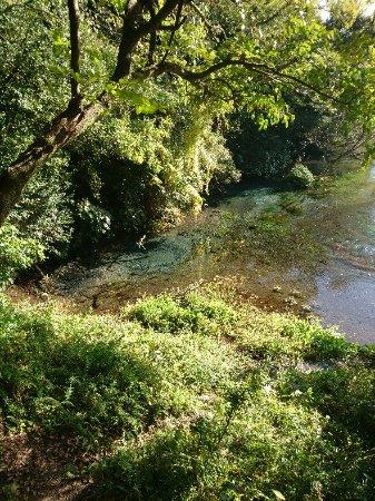 Kakitagawa Park: DSC_1404_large.jpg