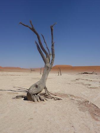 Sesriem, Namibia: next to deadvlei