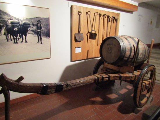Ferreira Cellars: history