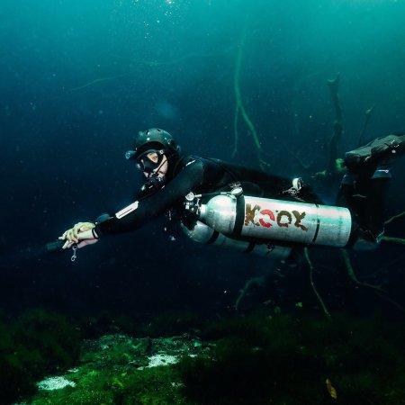 Koox Diving