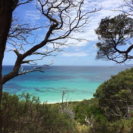 Cape to Cape Explorer Tours