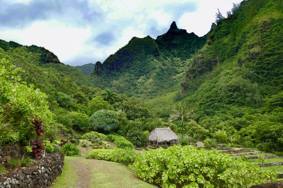 Hanalei, Havaí: Canyon view of the gardens
