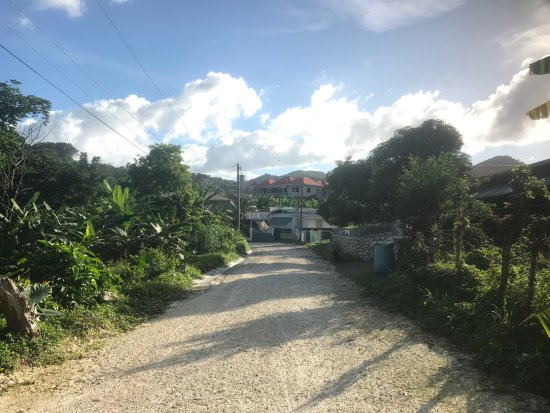 Winnifred Beach : Road/track down to the beach (looking toward main road)