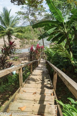 Pirate Cove: steps down to the river/sea