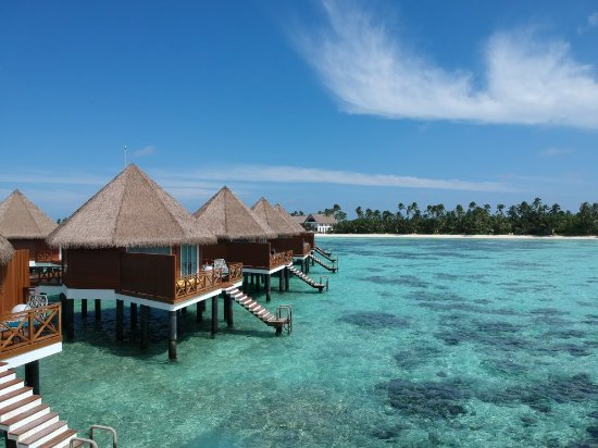 a comparison of maldives and australia Book cheap flights to maldives with wegocomau compare airline tickets & best flight deals to maldives find the lowest airfare now.