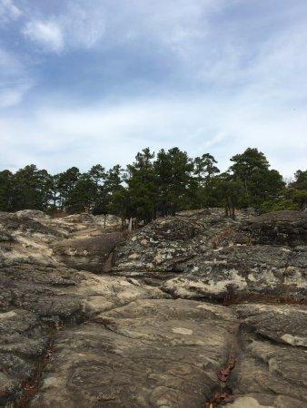 Morrilton, AR: Turtle Rocks