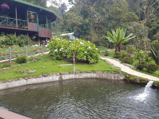 San Gerardo de Dota, Costa Rica: 20171209_115029_large.jpg