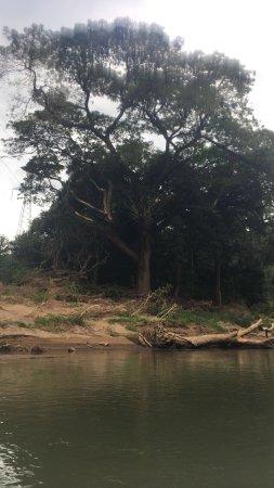 Província de Guanacaste, Costa Rica: river trip