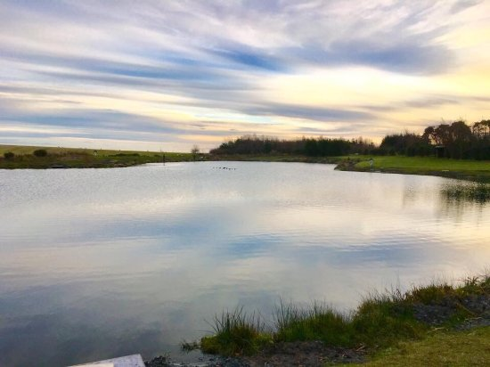 Denny, UK: Wellsfield Trout Fishery