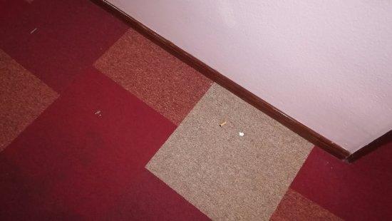 Best Cambrils : Suciedad en el pasillo a la habitación. Colilla incluida.