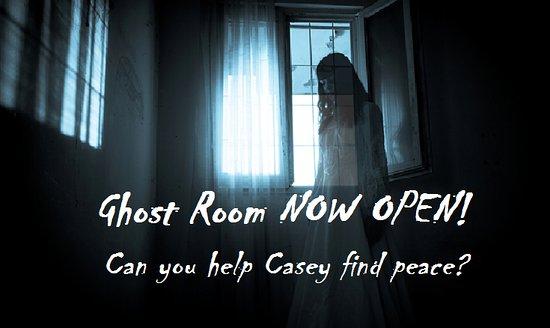 Apollo Beach, FL: Ghost room