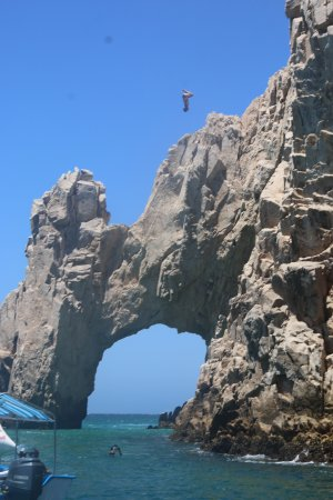 Blue Sky Cabo Fishing and Tours: Nice Style - Look way up......