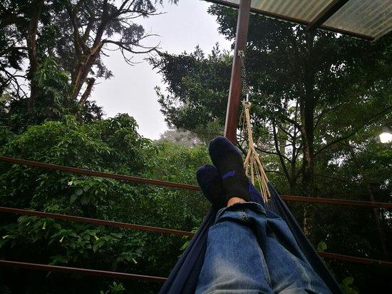 Cerro Plano, Costa Rica: IMG_20171207_152035_large.jpg