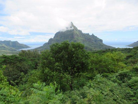 Papetoai, Polinesia Francesa: Montagne Rotui