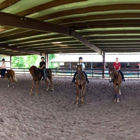 Pine Haven Stables & Riding Academy